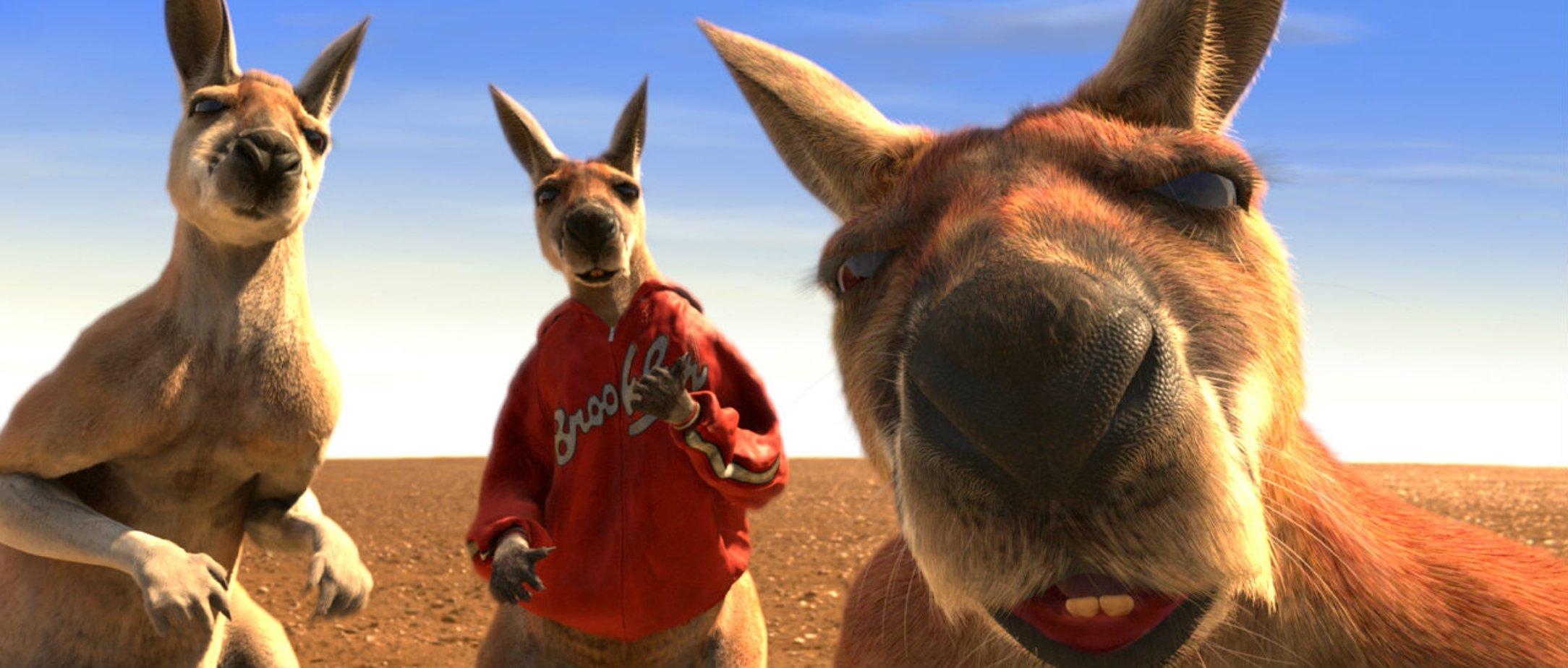 картинки кенгуру джекпот