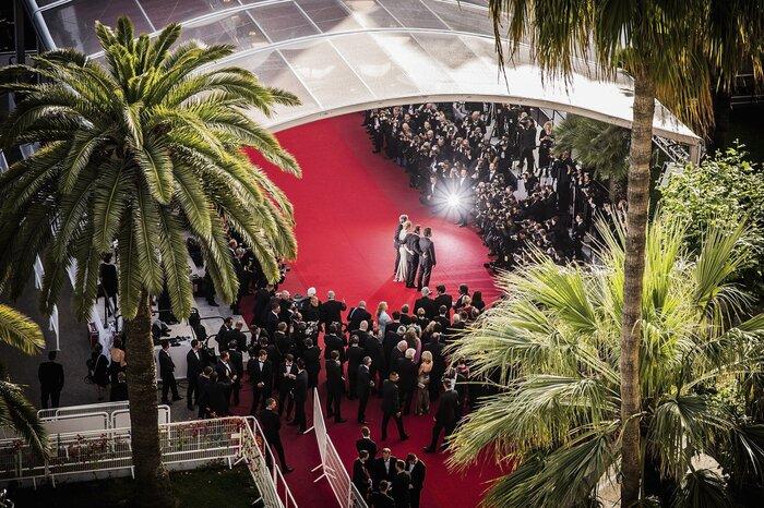 Каннский кинофестиваль глазами российского режиссёра