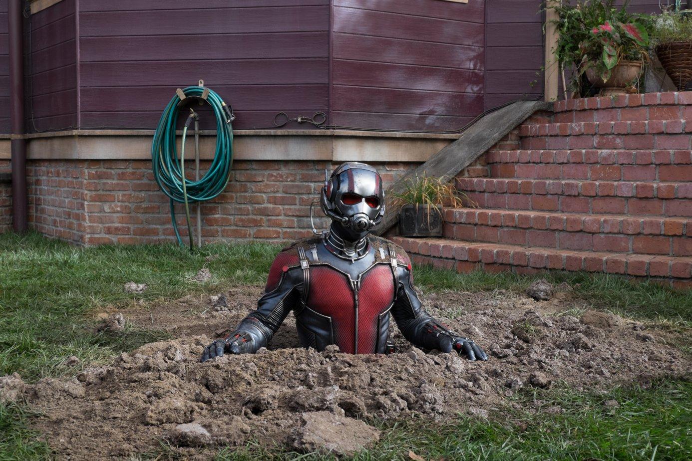 картинка человека муравья скачайте тематические