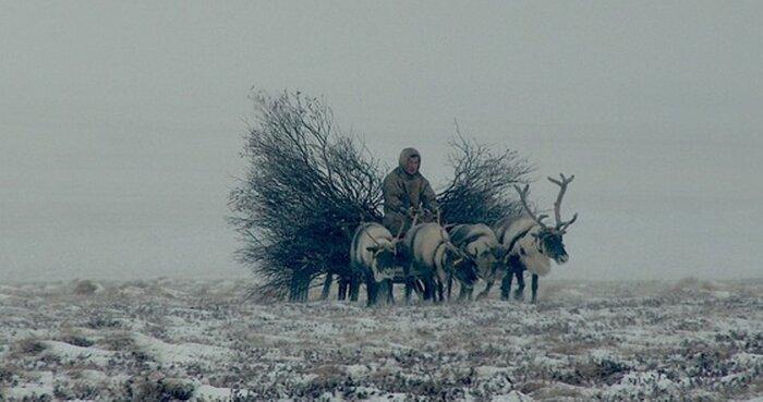 Документалист Эдгар Бартенев ищет поддержки герою своего фильма
