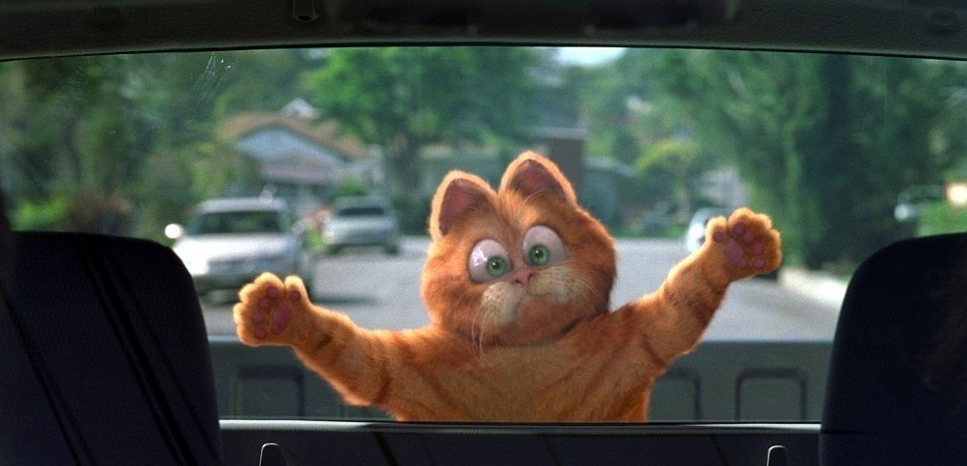 Смотреть онлайн кот гарфилд 14 фотография