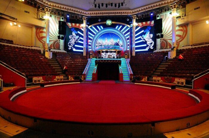 Цирки России начнут устраивать кинопоказы семейного кино