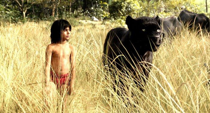 Лучшие фильмы этих выходных: что смотреть в кино и онлайн