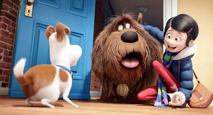 Предварительная касса: «Тайная жизнь домашних животных» до широкой премьеры показала отличный результат