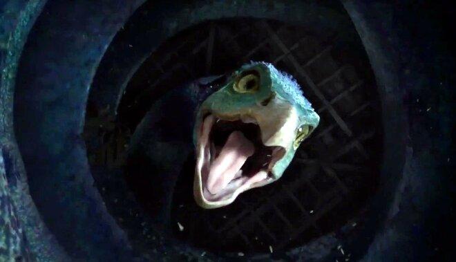 Всети интернет появился новый трейлер фильма «Фантастические твари игде они обитают»