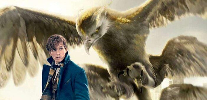 Как создавалась магия фильма «Фантастические твари и где они обитают»