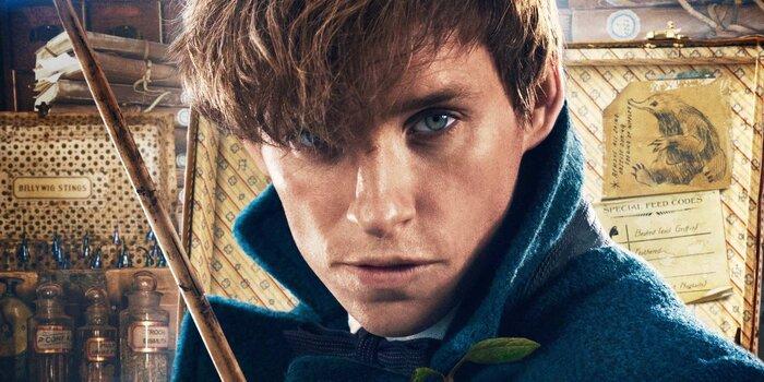 В «Гарри Поттере» обнаружили Ньюта Саламандера из «Фантастических тварей»
