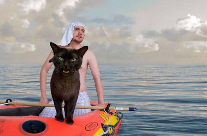 Британец и его кот пародируют культовые сцены из фильмов