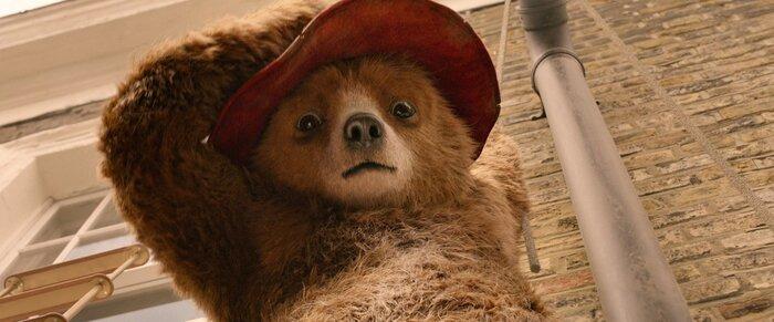 Фильм «Приключения Паддингтона 2» выйдет в прокат 20 января