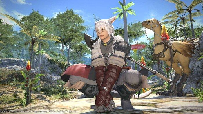 Вселенная Final Fantasy XIV расширится этим летом