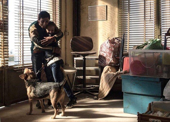 «Догмэн» — один из лучших авторских фильмов осени. Отзывы критиков