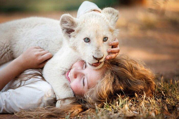 «Индустрия кино» про семейный фильм «Девочка Миа ибелый лев»