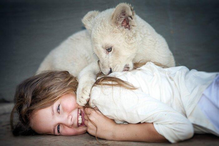 «Девочка Миа ибелый лев»: первыми оцените фрагмент французскогосемейного фильма