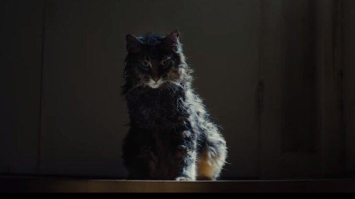 «Кладбище домашних животных» уже в кино. Первые отзывы