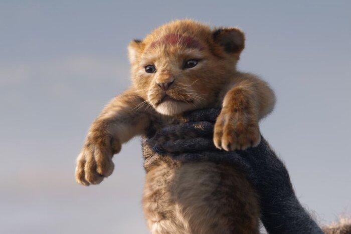 Тест «Фильм Про»: Угадай фильм по льву