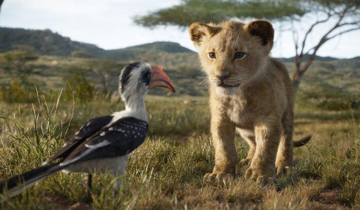 Касса России: фильм «Король лев» показал третий стартовый результат за всю историю (22.07.2019)