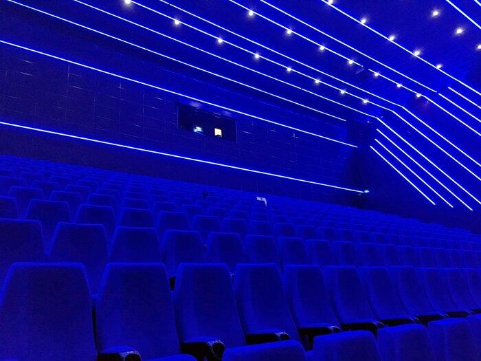 Названа предварительная дата открытия кинотеатров в Москве